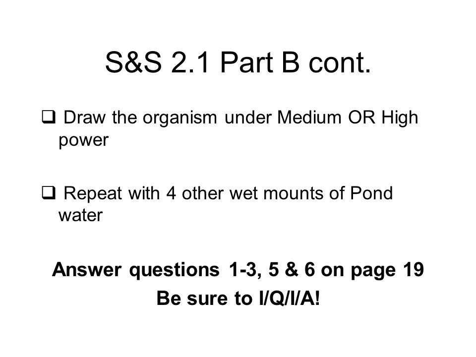 S&S 2.1 Part B cont.