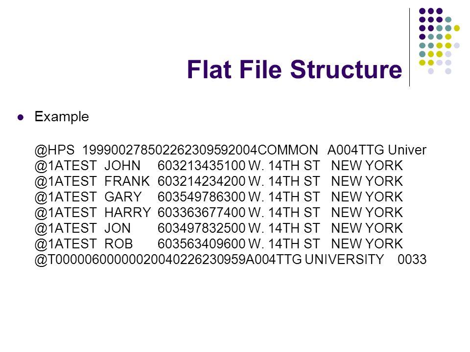 Flat File Structure Example @HPS 199900278502262309592004COMMON A004TTG Univer @1ATEST JOHN 603213435100 W. 14TH ST NEW YORK @1ATEST FRANK603214234200
