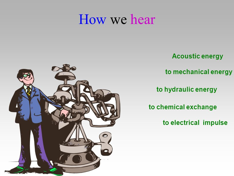 How we hear Acoustic energy to mechanical energy to hydraulic energy to chemical exchange to electrical impulse