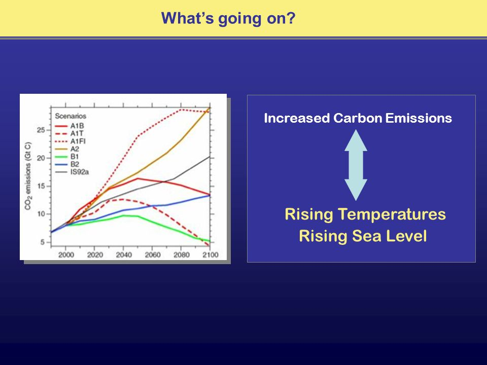 Whats going on? Increased Carbon Emissions Rising Temperatures Rising Sea Level