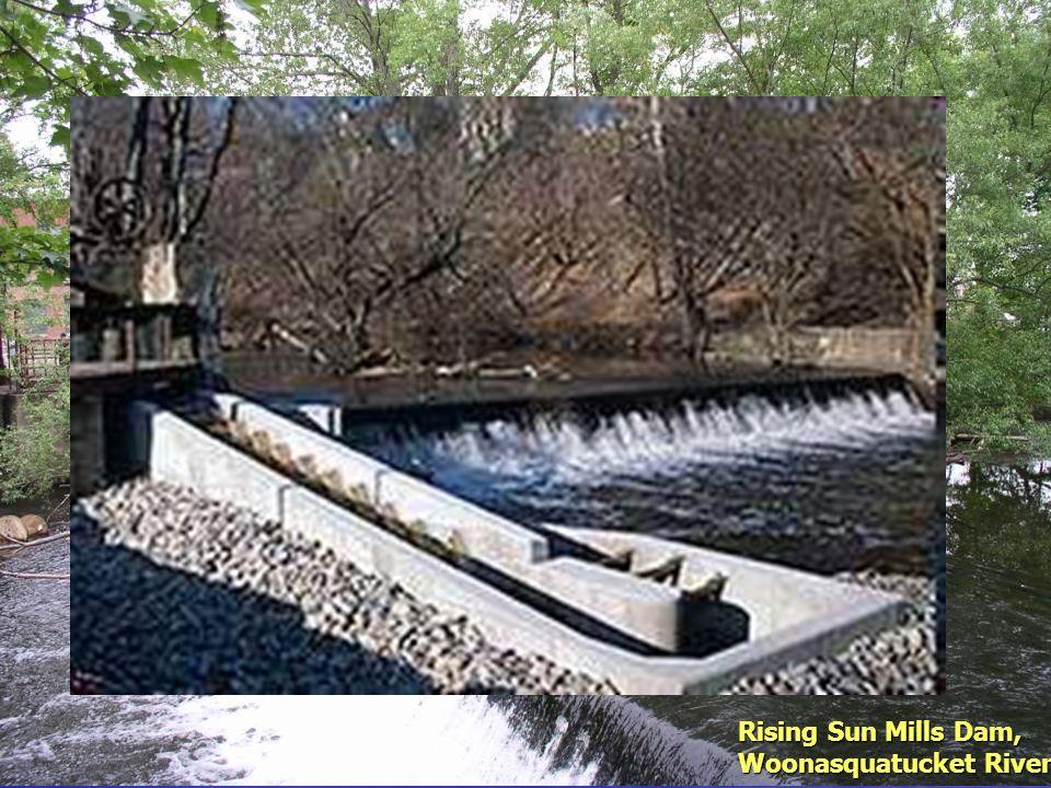 Rising Sun Mills Dam, Woonasquatucket River