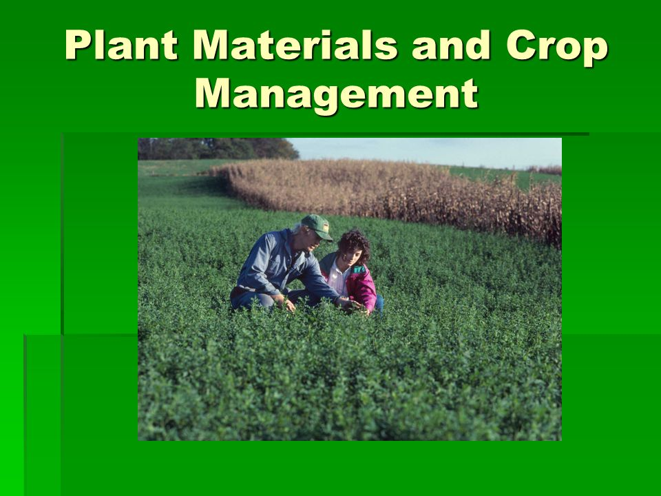 Plant Materials and Crop Management