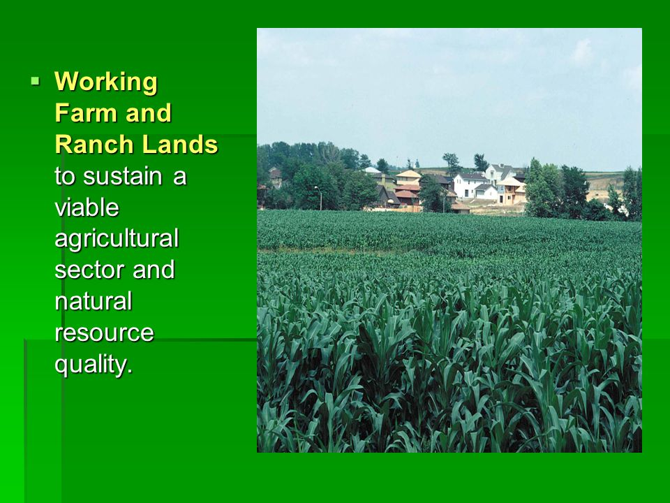 Working Farm and Ranch Lands to sustain a viable agricultural sector and natural resource quality. Working Farm and Ranch Lands to sustain a viable ag