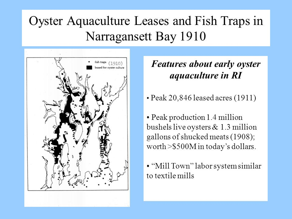 Oyster Aquaculture Leases and Fish Traps in Narragansett Bay 1910 Features about early oyster aquaculture in RI Peak 20,846 leased acres (1911) Peak p