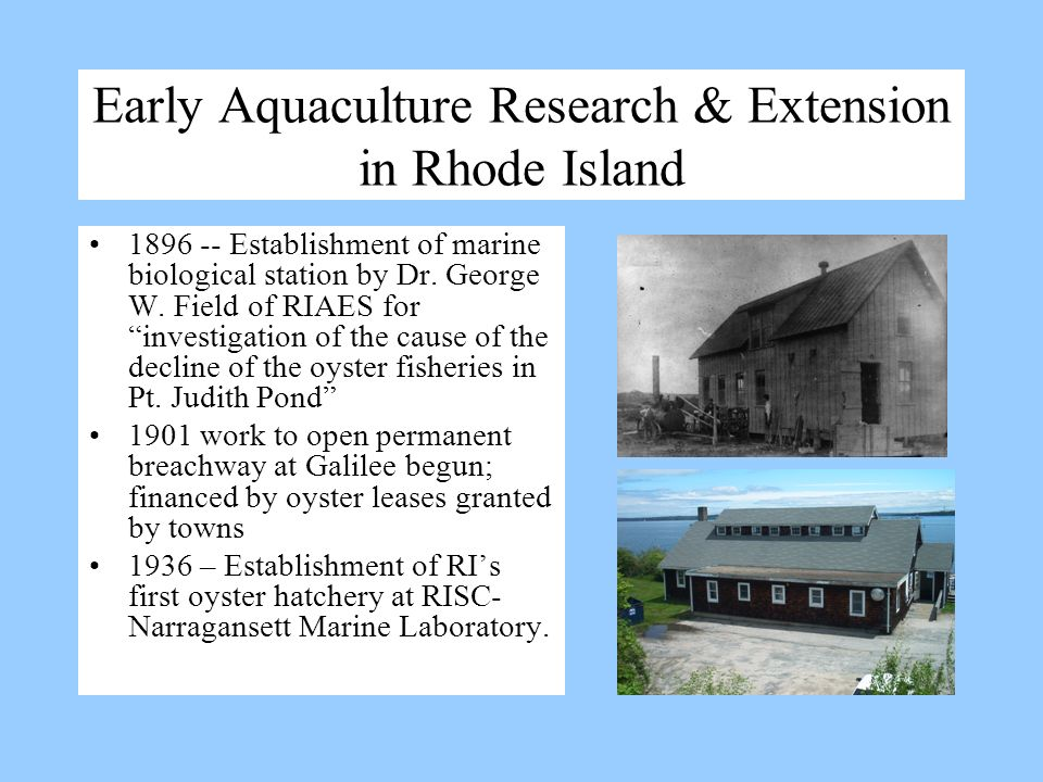 Early Aquaculture Research & Extension in Rhode Island 1896 -- Establishment of marine biological station by Dr. George W. Field of RIAES for investig