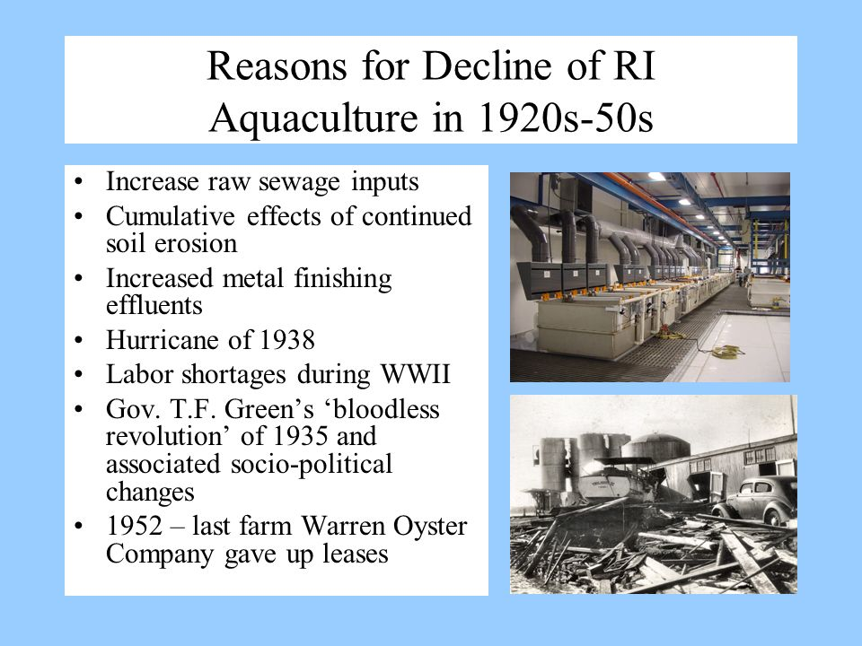 Reasons for Decline of RI Aquaculture in 1920s-50s Increase raw sewage inputs Cumulative effects of continued soil erosion Increased metal finishing e