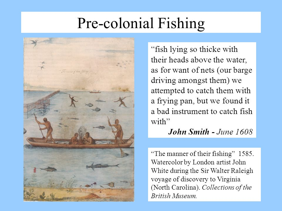 Pre-colonial Fishing The manner of their fishing 1585. Watercolor by London artist John White during the Sir Walter Raleigh voyage of discovery to Vir