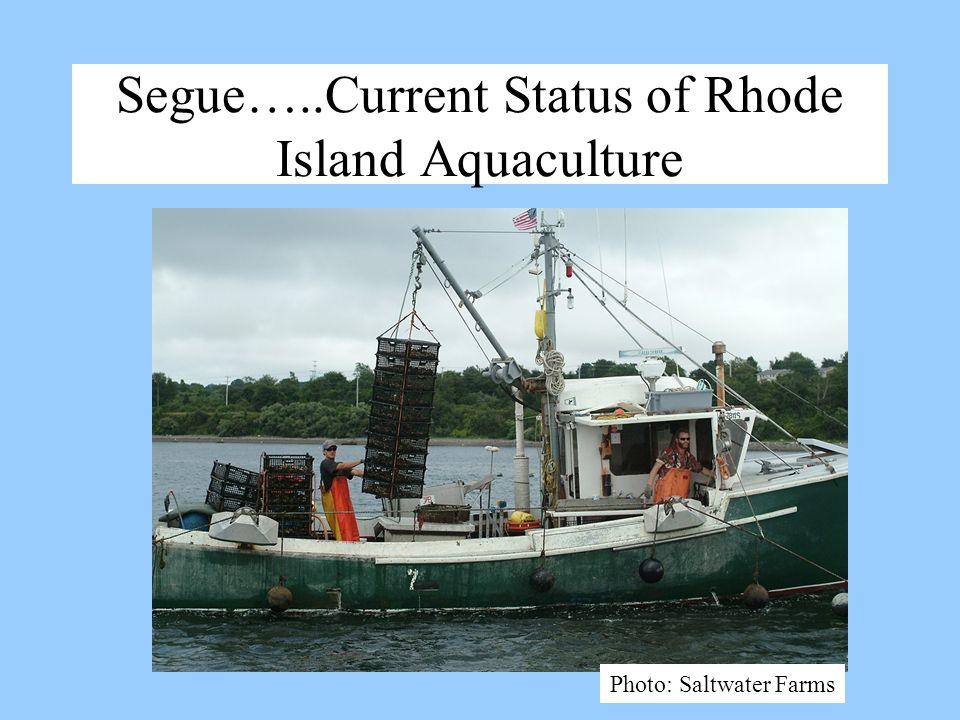 Segue…..Current Status of Rhode Island Aquaculture Photo: Saltwater Farms