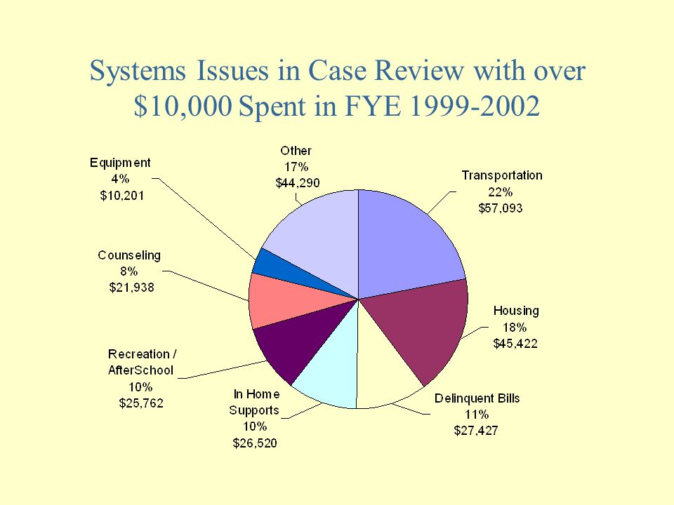 Systems Issues in Case Review with over $10,000 Spent in FYE 1999-2002