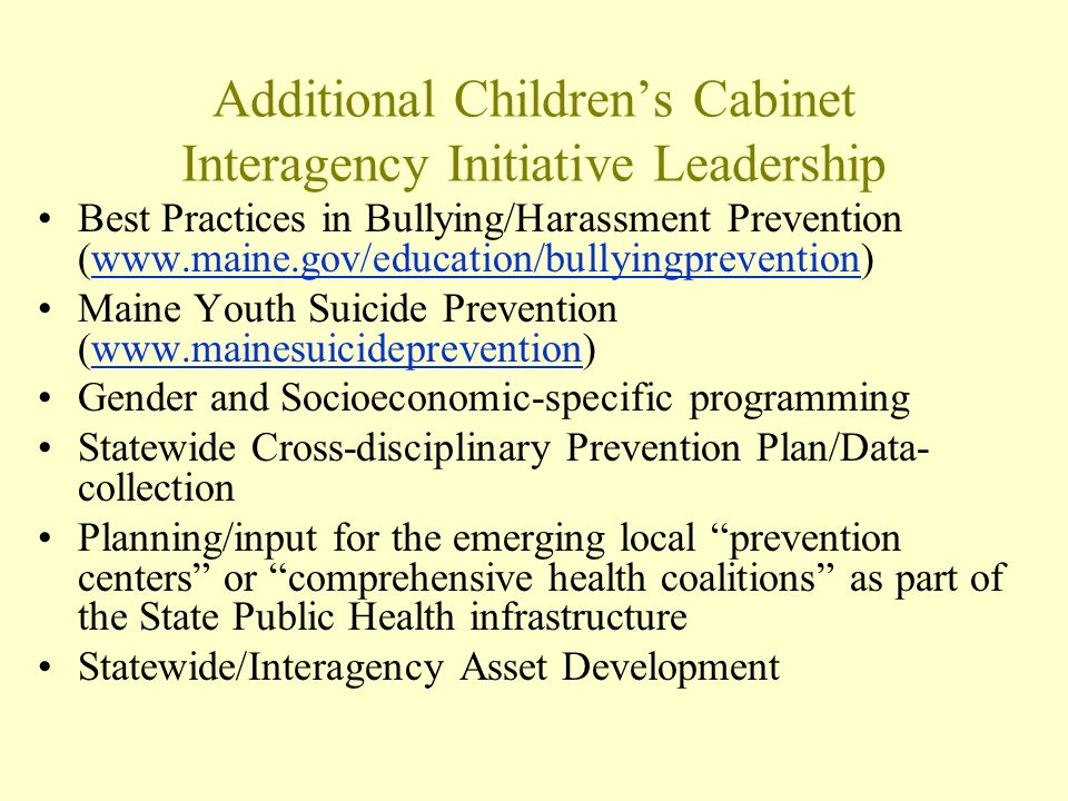 Additional Childrens Cabinet Interagency Initiative Leadership Best Practices in Bullying/Harassment Prevention (www.maine.gov/education/bullyingprevention)www.maine.gov/education/bullyingprevention Maine Youth Suicide Prevention (www.mainesuicideprevention)www.mainesuicideprevention Gender and Socioeconomic-specific programming Statewide Cross-disciplinary Prevention Plan/Data- collection Planning/input for the emerging local prevention centers or comprehensive health coalitions as part of the State Public Health infrastructure Statewide/Interagency Asset Development