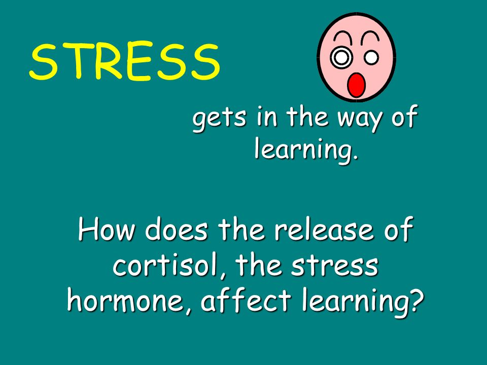 STRESS gets in the way of learning.