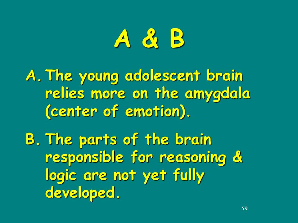 59 A & B A.The young adolescent brain relies more on the amygdala (center of emotion).