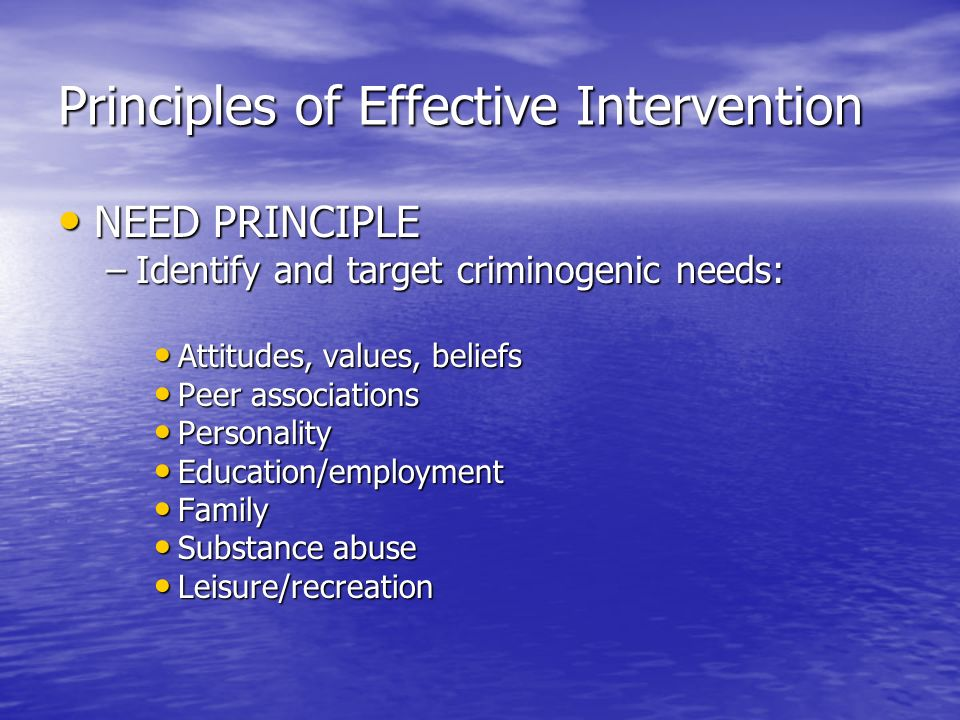 Principles of Effective Intervention NEED PRINCIPLE NEED PRINCIPLE –Identify and target criminogenic needs: Attitudes, values, beliefs Attitudes, valu