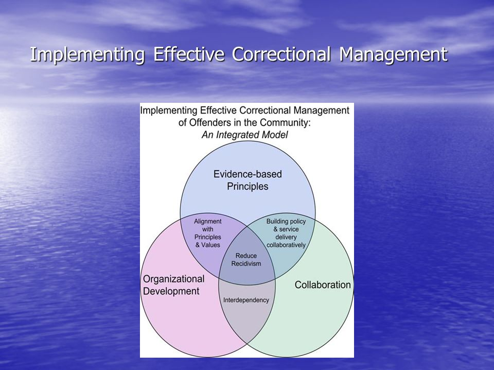 Principles of Effective Intervention Individual studies and meta-analyses have indicated that targeting non-criminogenic needs can lead to: –No effect on recidivism –Increased recidivism