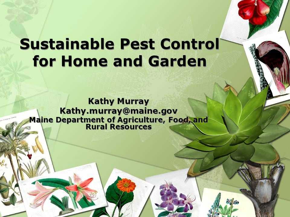 Sustainable Pest Control for Home and Garden Kathy Murray Kathy.murray@maine.gov Maine Department of Agriculture, Food, and Rural Resources Kathy Murr