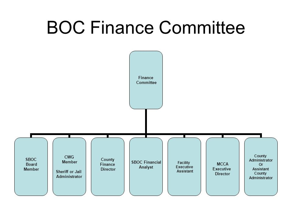BOC Finance Committee Finance Committee SBOC Board Member CWG Member Sheriff or Jail Administrator County Finance Director SBOC Financial Analyst Facility Executive Assistant MCCA Executive Director County Administrator Or Assistant County Administrator