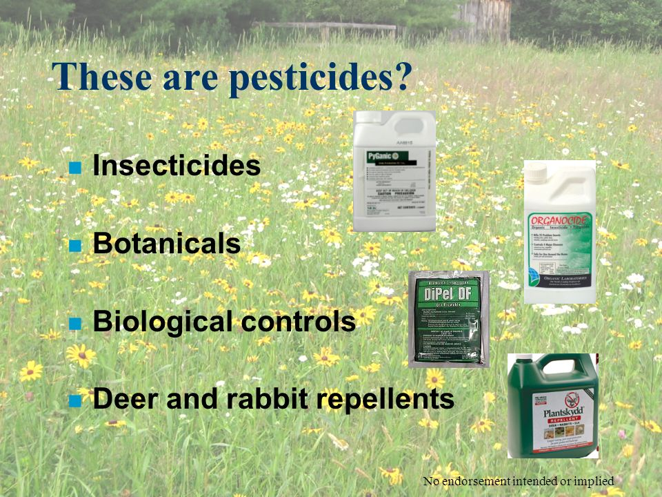 These are pesticides? n Insecticides n Botanicals n Biological controls n Deer and rabbit repellents No endorsement intended or implied
