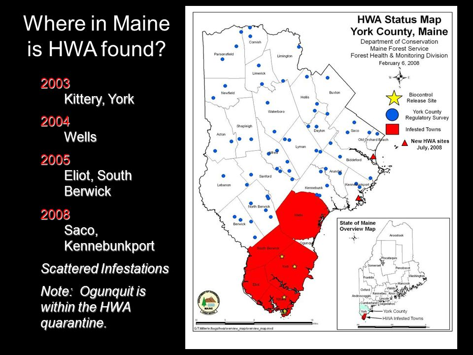 New sites July, 2008 Where in Maine is HWA found.