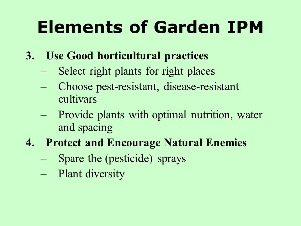 Elements of Garden IPM 3.Use Good horticultural practices –Select right plants for right places –Choose pest-resistant, disease-resistant cultivars –P