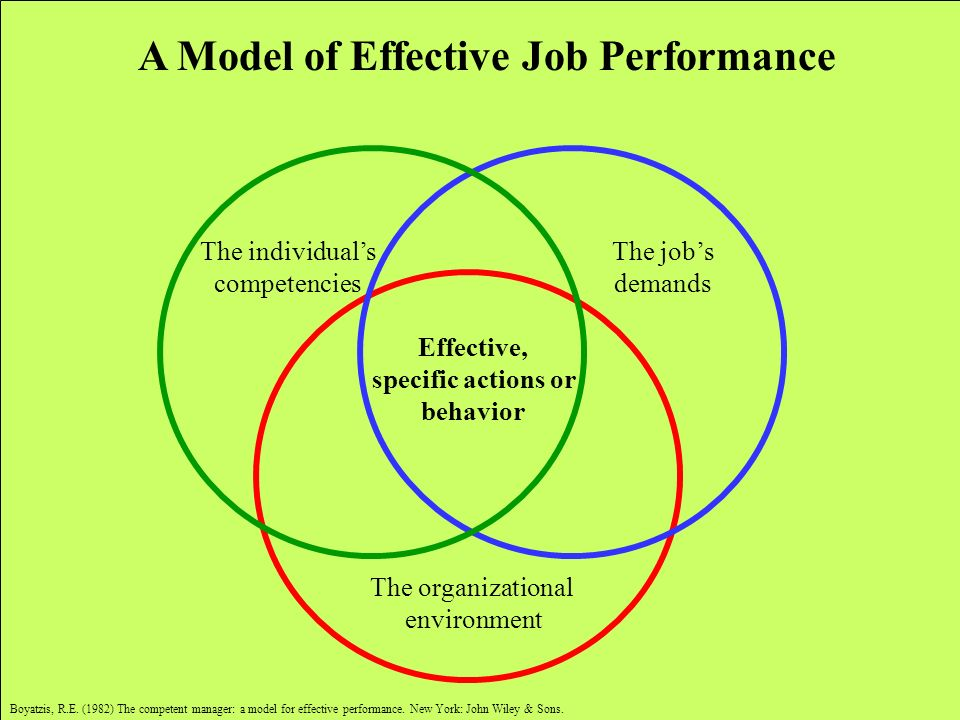 The organizational environment Effective, specific actions or behavior The jobs demands The individuals competencies A Model of Effective Job Performa