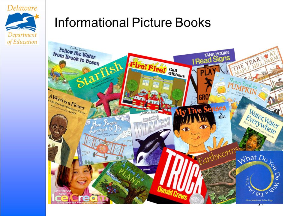 Informational Picture Books 37