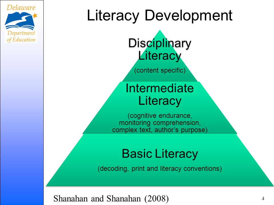 Literacy Development Disciplinary Literacy (content specific) Intermediate Literacy (cognitive endurance, monitoring comprehension, complex text, auth