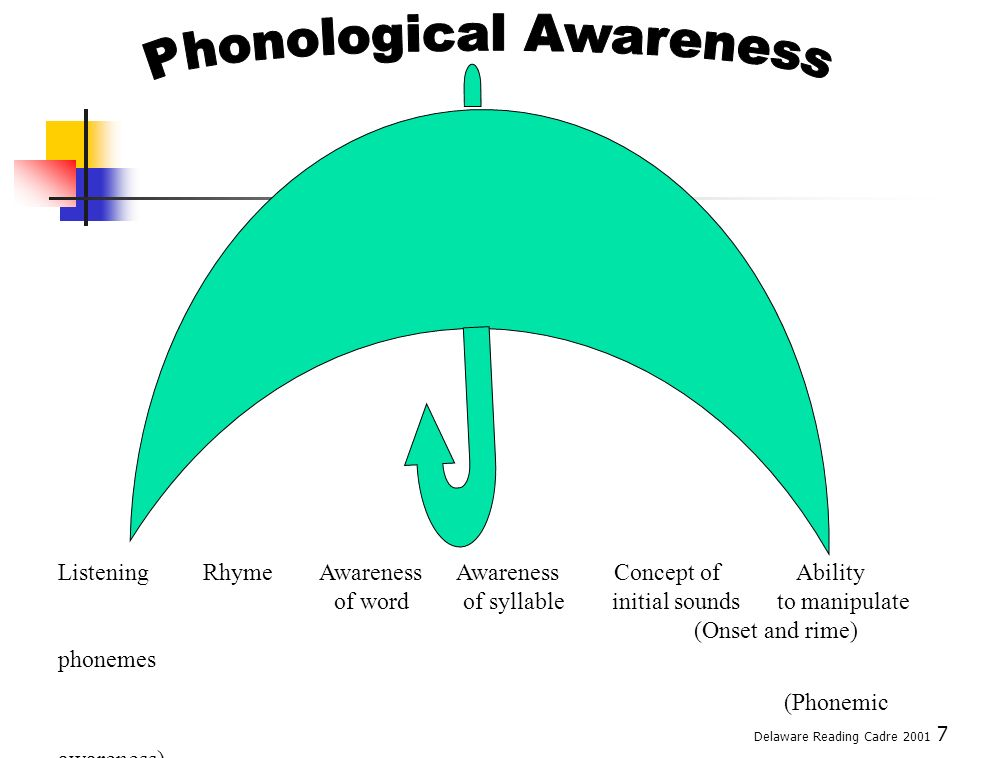 8 Phonological Awareness: Defined Demonstration Listening Rhyming Concept of word Syllabication Onset/Rime – compare to phonograms/ word families Phoneme Manipulation Blending Segmentation Deletion Bibliography of activity books available in handouts Delaware Reading Cadre 2001