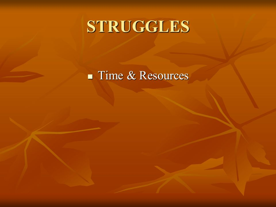 STRUGGLES Time & Resources Time & Resources