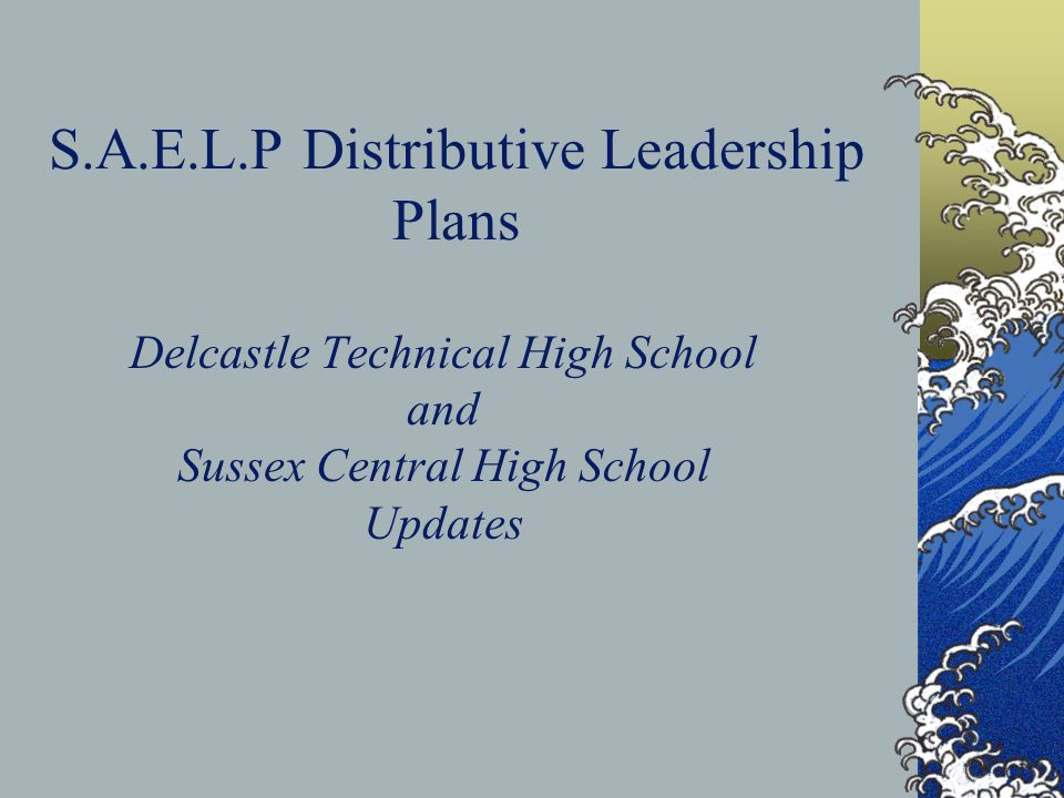 S.A.E.L.P Distributive Leadership Plans Delcastle Technical High School and Sussex Central High School Updates