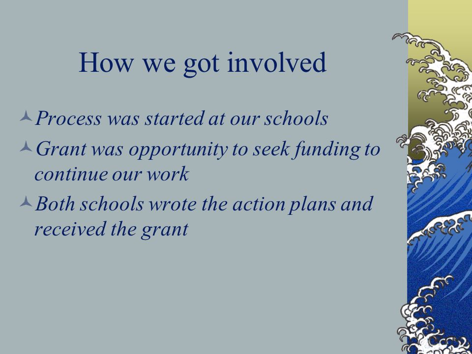 How we got involved Process was started at our schools Grant was opportunity to seek funding to continue our work Both schools wrote the action plans and received the grant