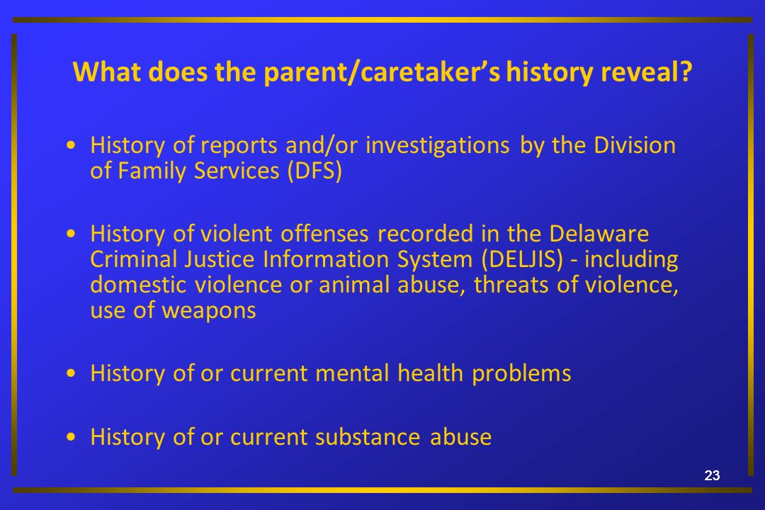 23 What does the parent/caretakers history reveal? History of reports and/or investigations by the Division of Family Services (DFS) History of violen