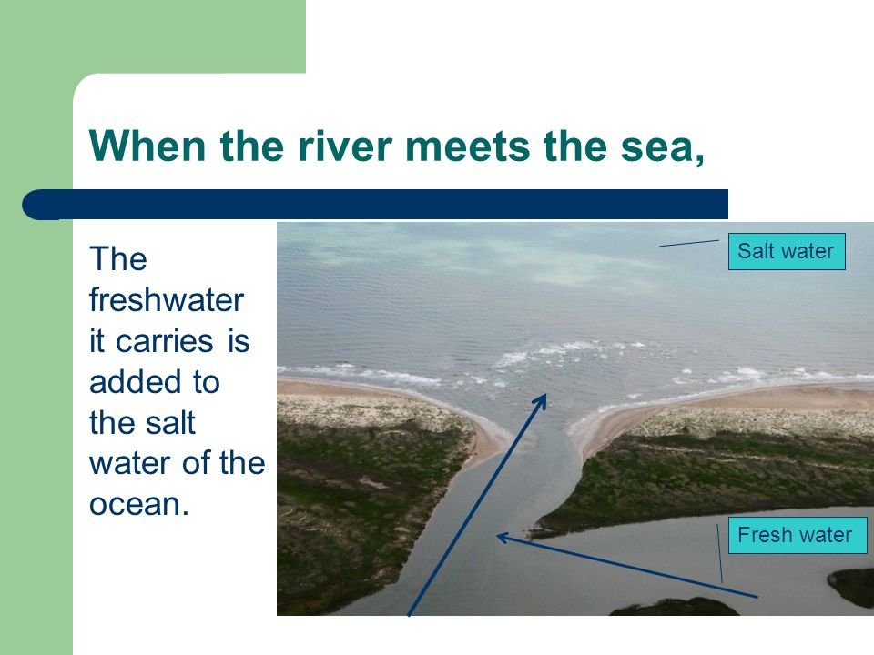 When the river meets the sea, The freshwater it carries is added to the salt water of the ocean. Salt water Fresh water