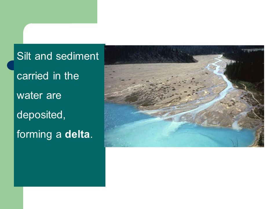 Silt and sediment carried in the water are deposited, forming a delta.