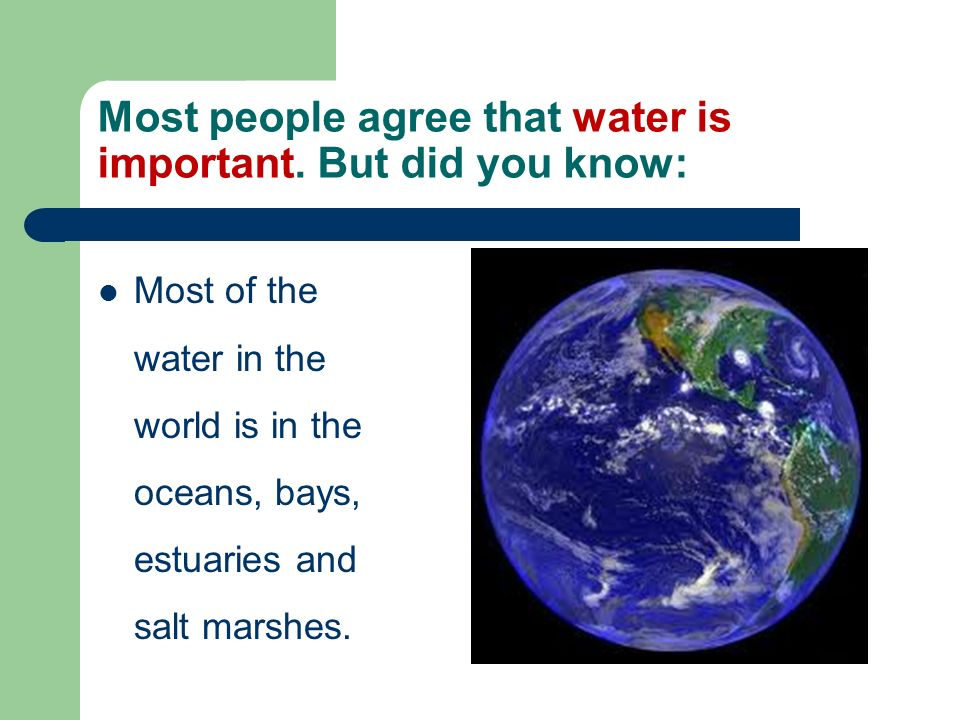 Most people agree that water is important. But did you know: Most of the water in the world is in the oceans, bays, estuaries and salt marshes.