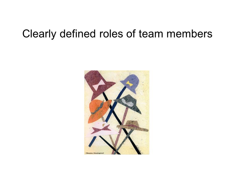 Clearly defined roles of team members
