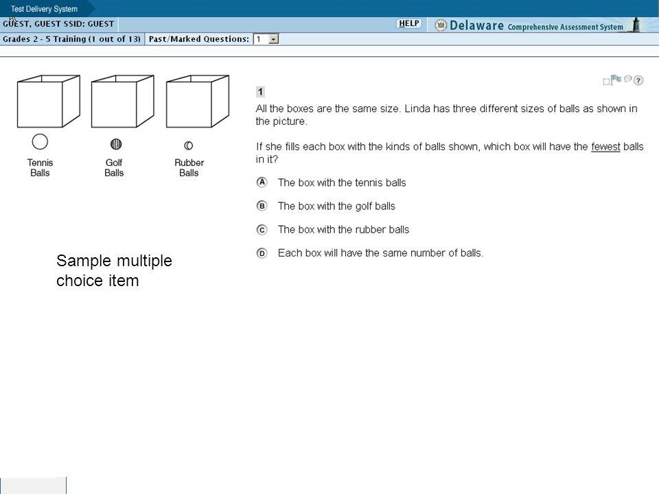 Sample multiple choice item