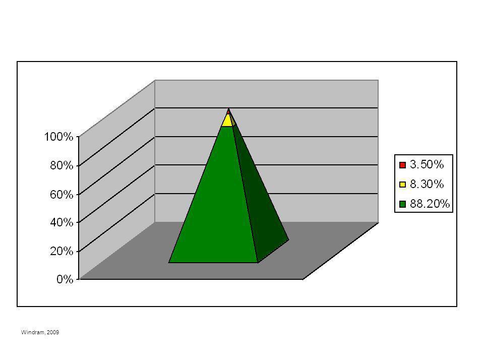 Windram, 2009 CLMS Three Tier RtI Model: Examples