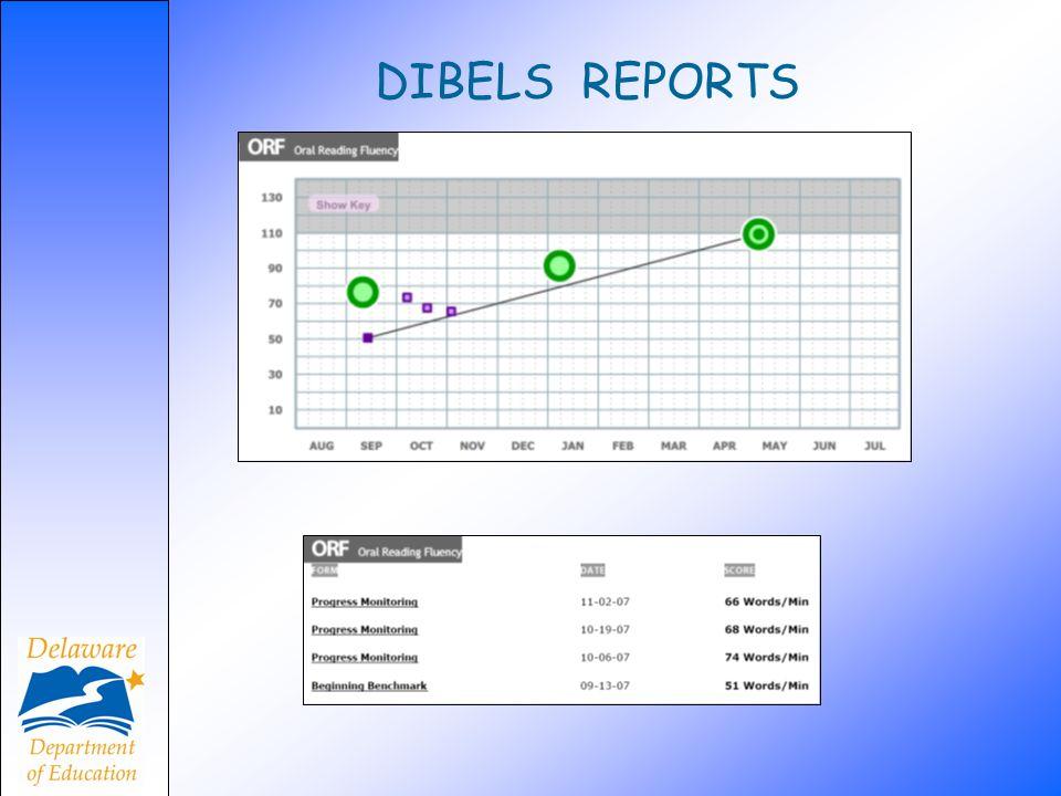 DIBELS REPORTS