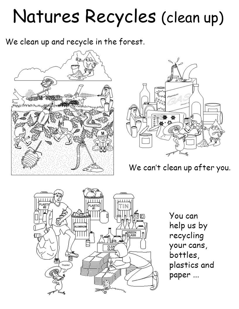 Natures Recycles (clean up) We clean up and recycle in the forest. We cant clean up after you. You can help us by recycling your cans, bottles, plasti