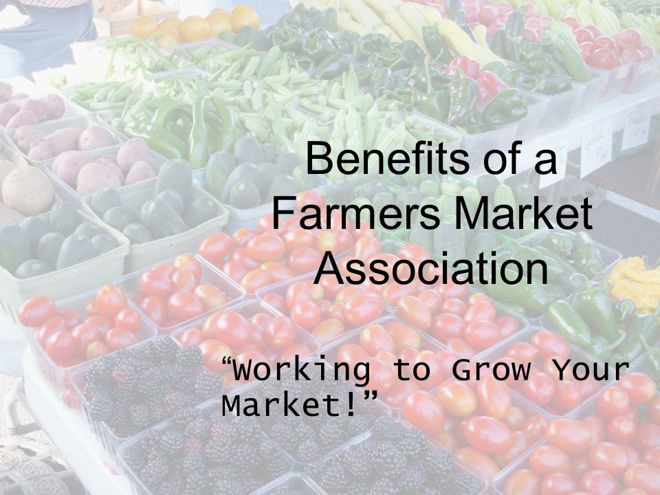Laying the Groundwork Support Local Farmers Markets Better Informed Managers Training Opportunities Expand Programs & Partnerships Provide ongoing Resources Provide Networking across the state and nation
