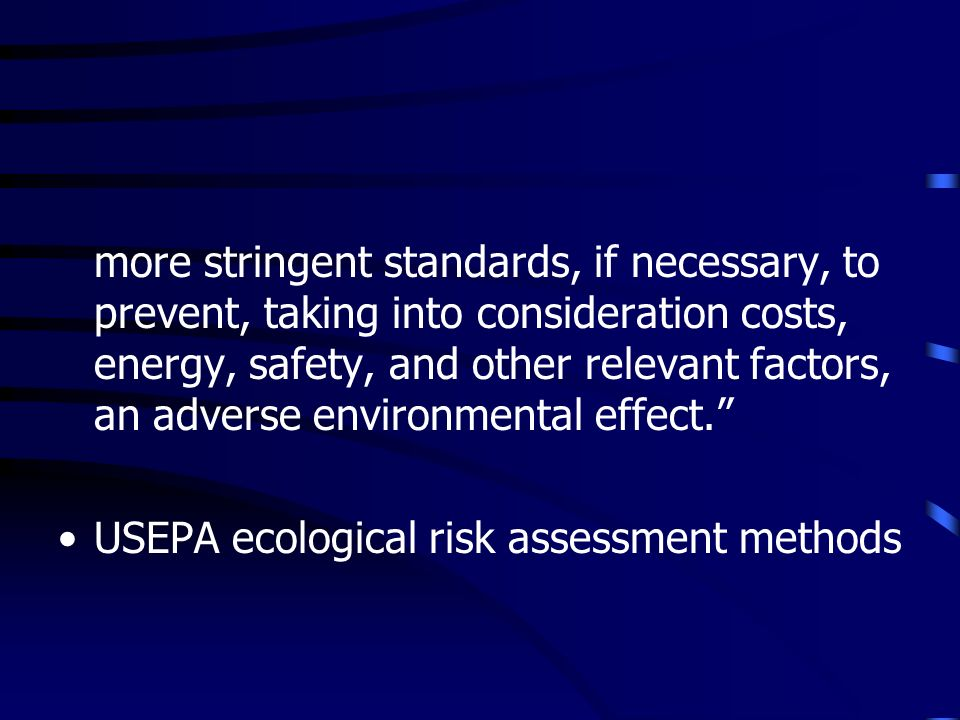 more stringent standards, if necessary, to prevent, taking into consideration costs, energy, safety, and other relevant factors, an adverse environmen