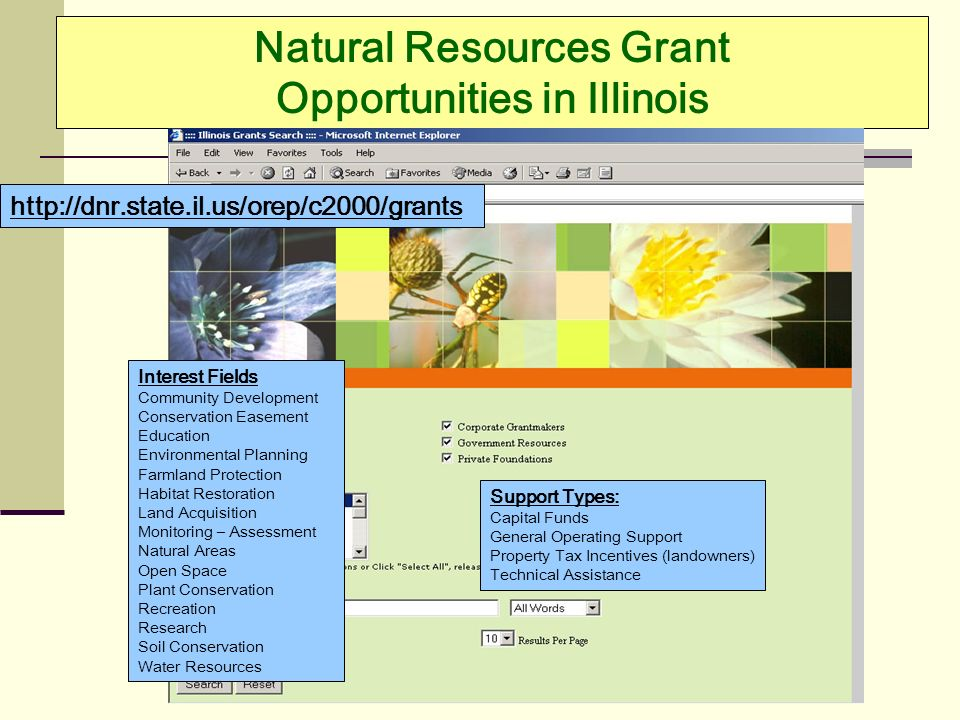 Natural Resources Grant Opportunities in Illinois http://dnr.state.il.us/orep/c2000/grants Interest Fields Community Development Conservation Easement