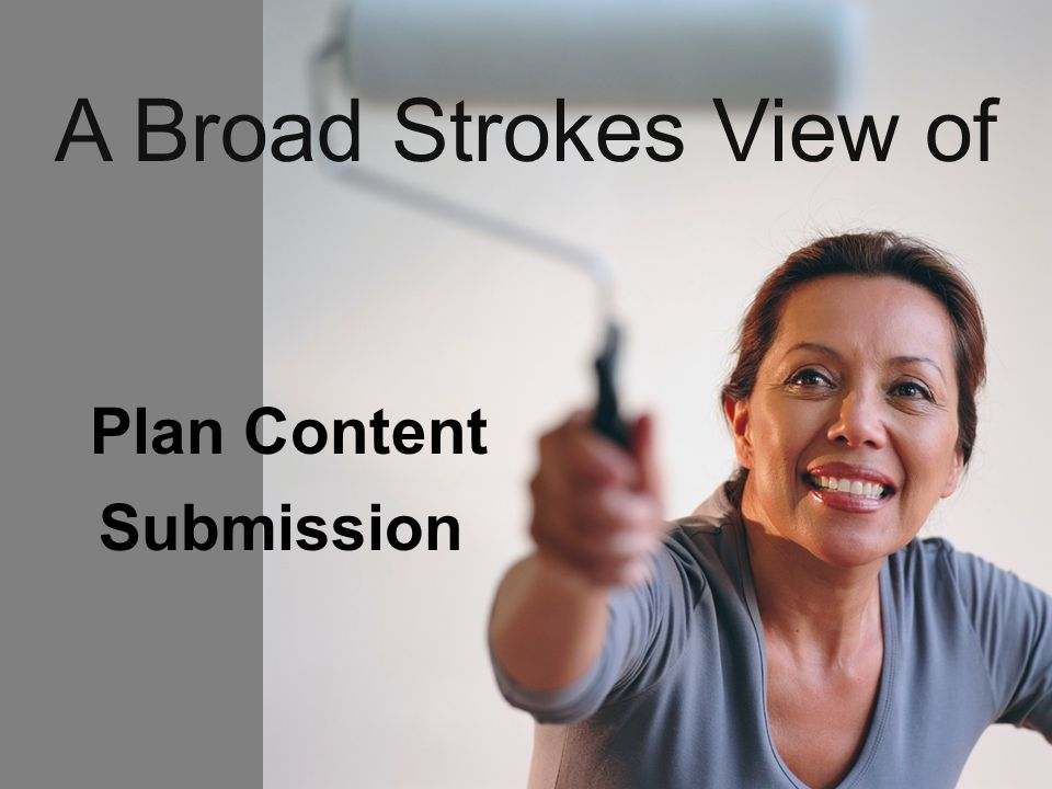 Plan Content Submission A Broad Strokes View of