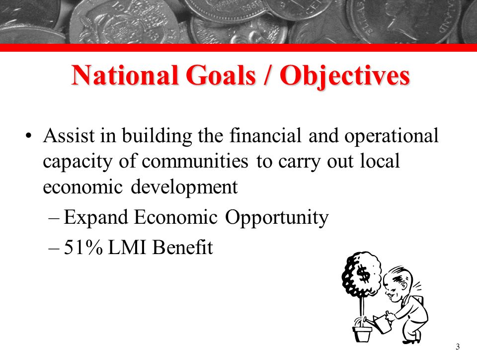 National Goals / Objectives Assist in building the financial and operational capacity of communities to carry out local economic development –Expand E