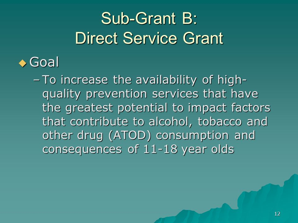 12 Sub-Grant B: Direct Service Grant Goal Goal –To increase the availability of high- quality prevention services that have the greatest potential to