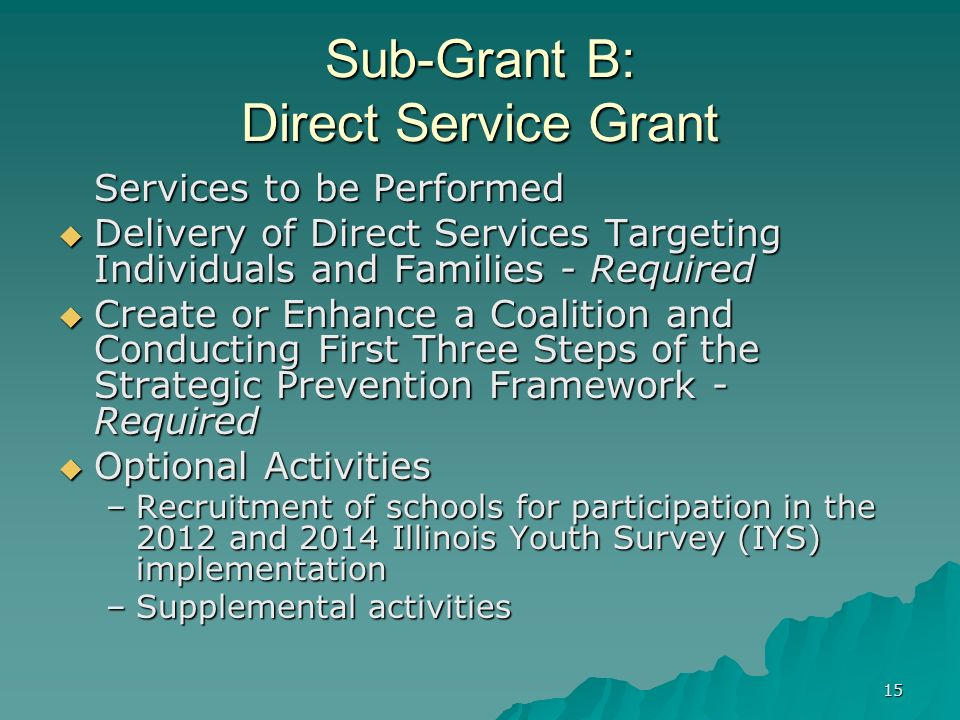 15 Sub-Grant B: Direct Service Grant Services to be Performed Delivery of Direct Services Targeting Individuals and Families - Required Delivery of Di