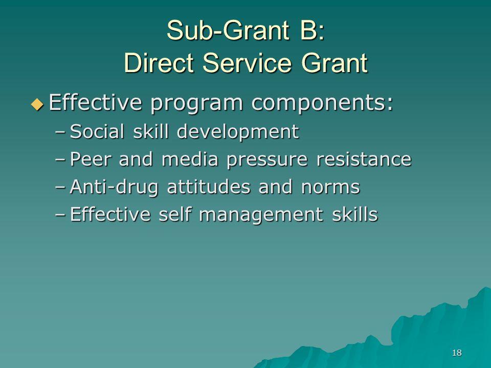 18 Sub-Grant B: Direct Service Grant Effective program components: Effective program components: –Social skill development –Peer and media pressure re