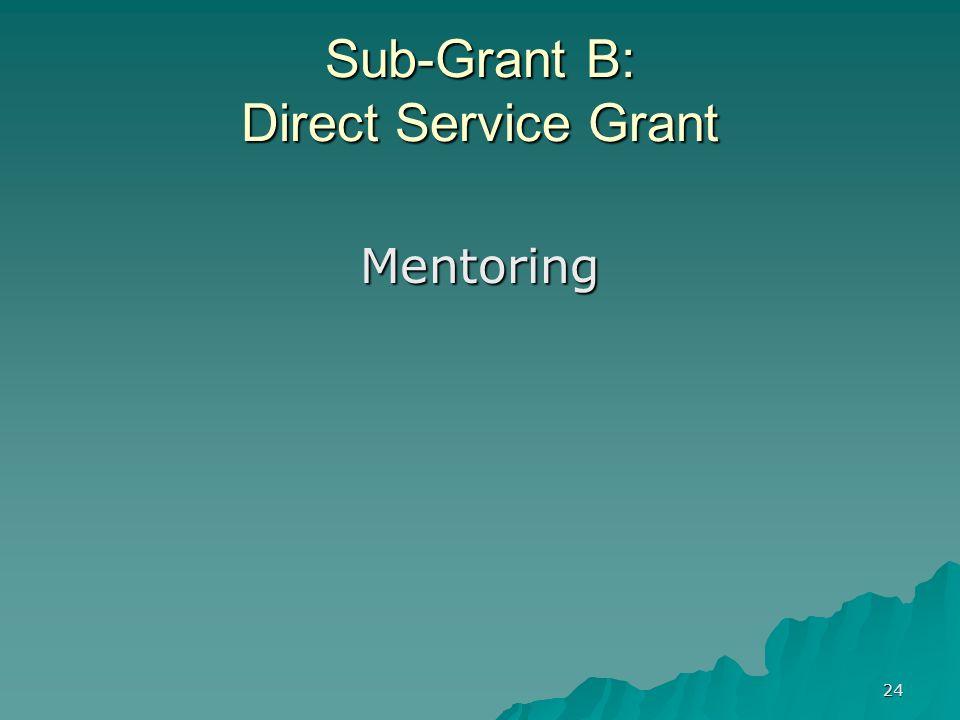 24 Sub-Grant B: Direct Service Grant Mentoring