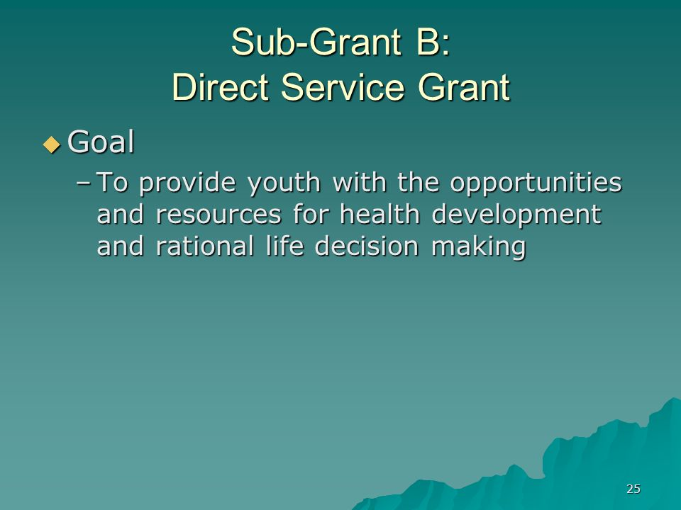 25 Sub-Grant B: Direct Service Grant Goal Goal –To provide youth with the opportunities and resources for health development and rational life decisio