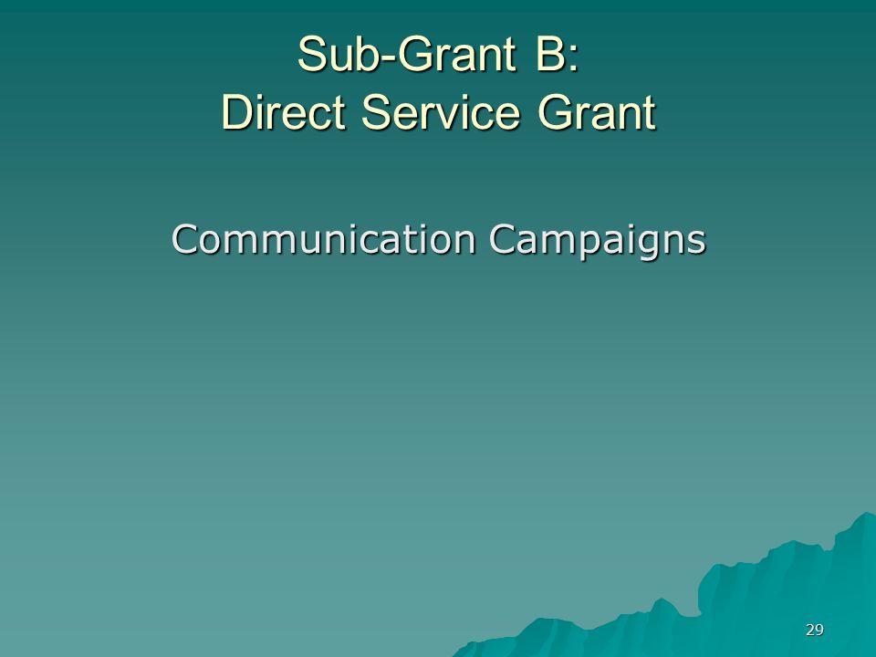 29 Sub-Grant B: Direct Service Grant Communication Campaigns